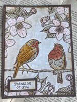 PaperArtsy Eclectica E³ Mounted Rubber Stamp Set - Scrapcosy 22 - ESC22